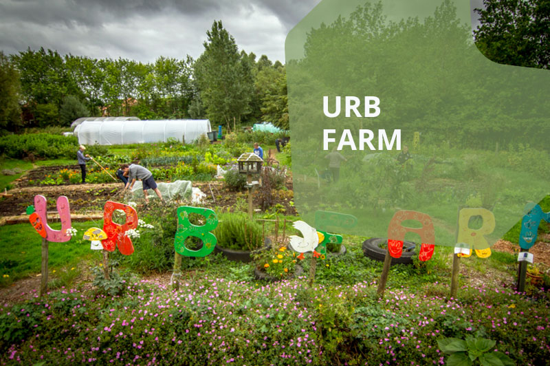 urbfarm hightlight