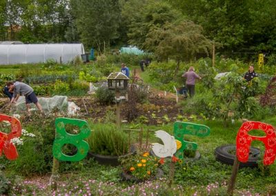 The Urb Farm